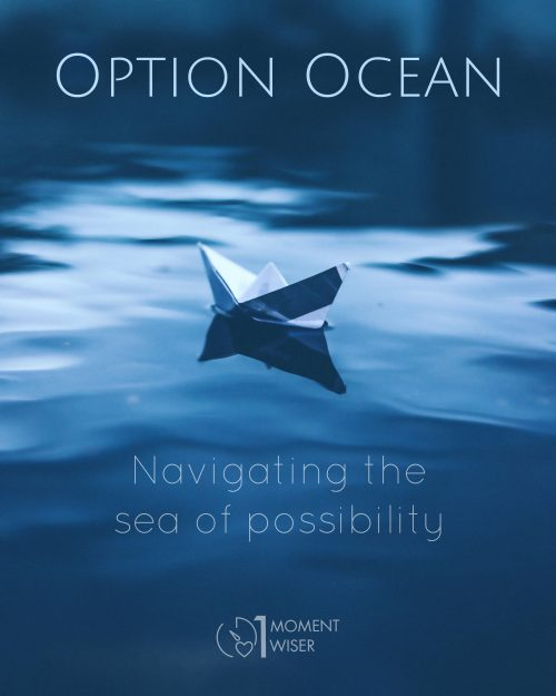 Option Ocean: Navigating the Sea of Possibility