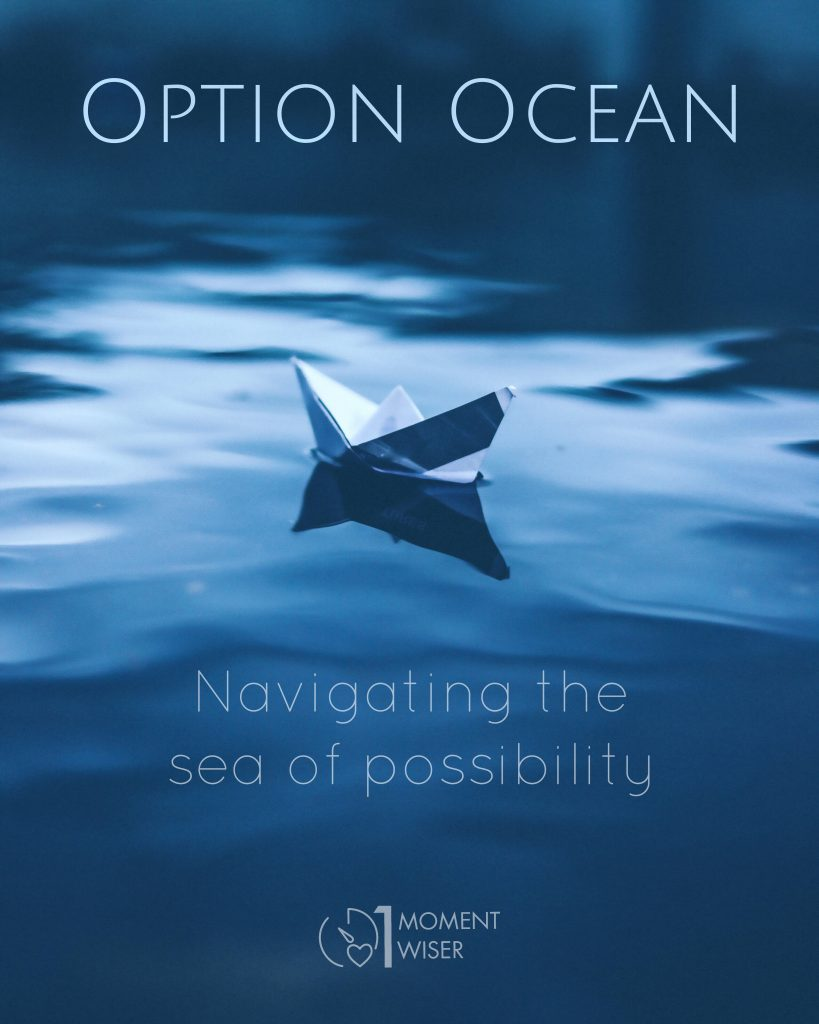 Option Ocean blue book cover with paper boat